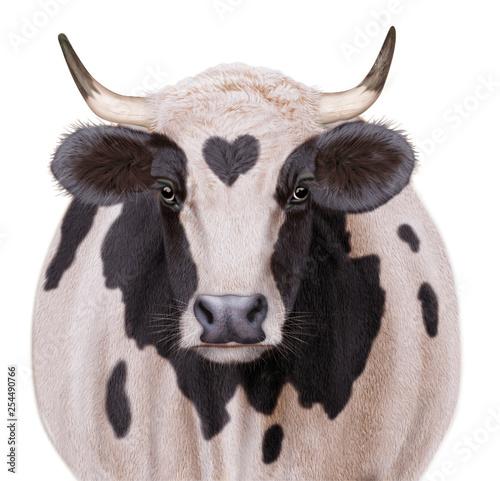 Vache Laitière Amour Coeur Animal Ferme Bétail De Face