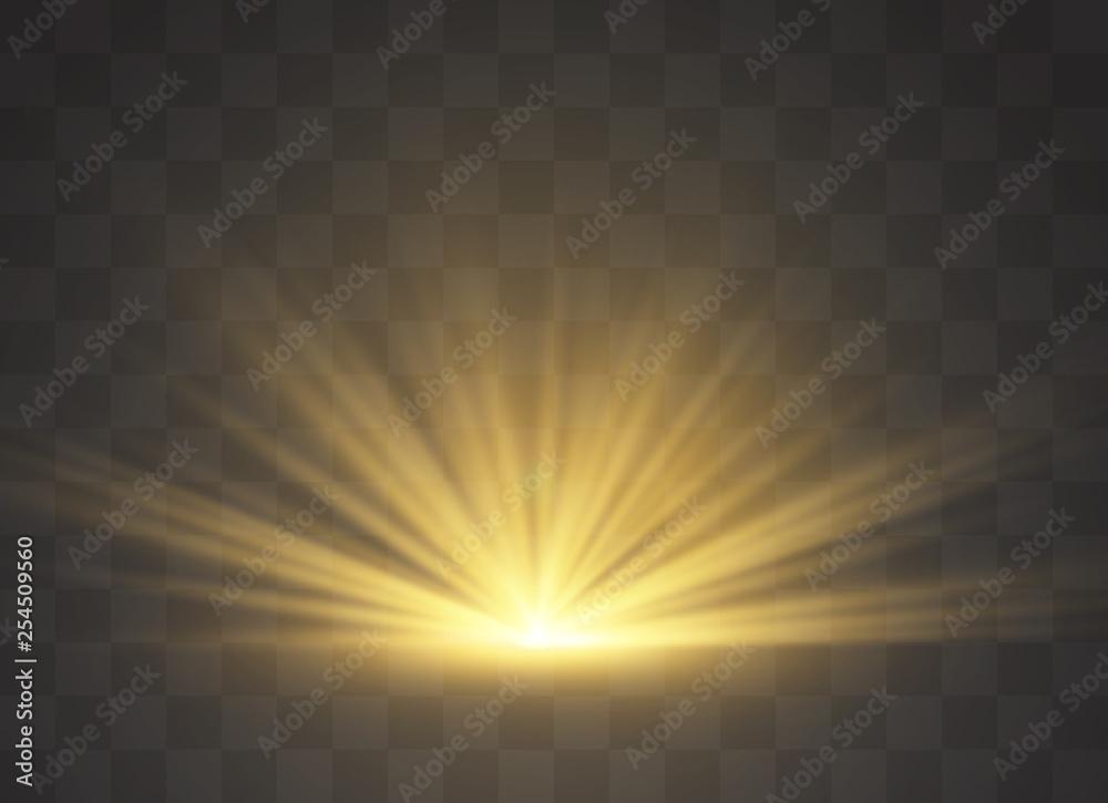 Fototapety, obrazy: Light highlight yellow