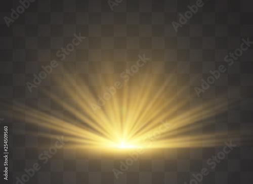Fotografie, Obraz Light highlight yellow