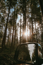 Gray Framed Vehicle Side Mirror Under Green Trees During Daytime