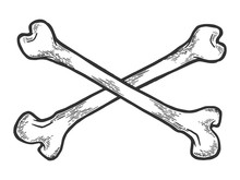 Crossed Bones. Pirate Symbol Sketch Engraving Vector Illustration. Scratch Board Style Imitation. Hand Drawn Image.
