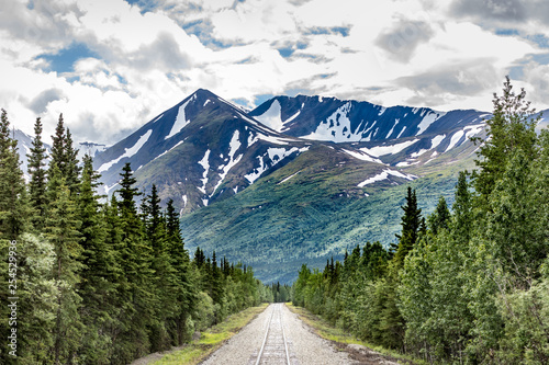 Railroad to Denali National Park, Alaska with impressive mountains Wallpaper Mural