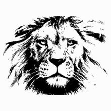 Lion Head Silhouette Vector Il...