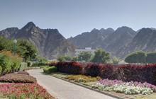 Mascate (Muscat), Capitale Du Sultanat D'Oman