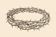 Crown Of Thorns, Sketch. Hand ...