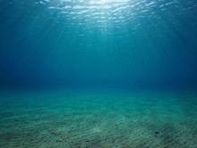 Underwater Seascape Sandy Seabed With Natural Sunlight Below Water Surface In The Mediterranean Sea, France