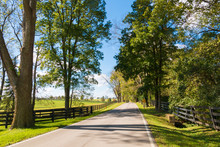 Country Road Along Forse Farms.