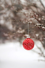 Red Christmas Ornament Hanging In A Tree