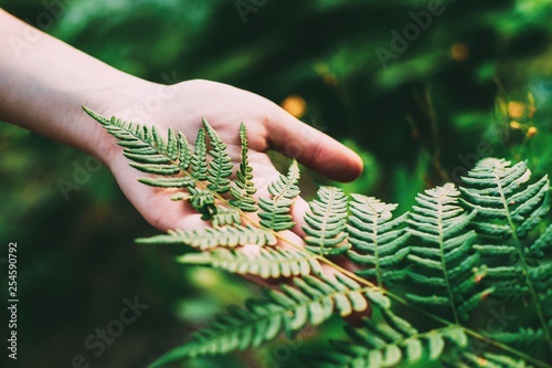 Fotografia  Young Girl Touching Holding Fern Leaf In Summer Park Forest