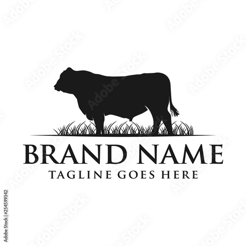 angus cow logo Canvas Print