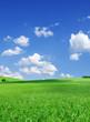 Leinwandbild Motiv Idyllic view, green hills and blue sky with white clouds