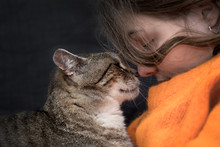 Girl With A Kitten,  Cat Love