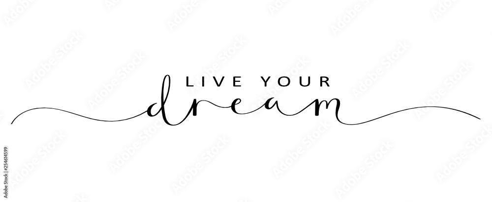 Fototapeta LIVE YOUR DREAM brush calligraphy banner