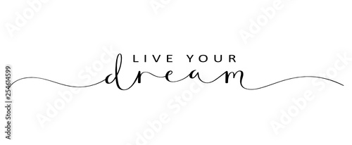 Fototapeta LIVE YOUR DREAM brush calligraphy banner obraz
