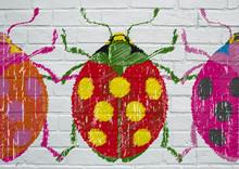 Street Art. Coccinelle