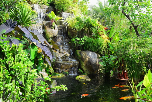 Printed kitchen splashbacks Squirrel A view of the waterfall built and the fish pond in the beautiful garden.