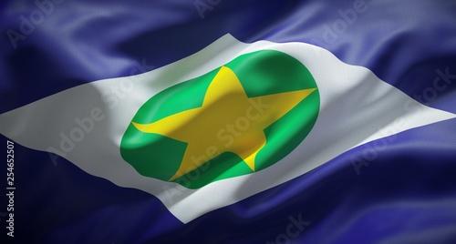 Fotografija  Bandeira oficial de Mato Grosso, Brasil.