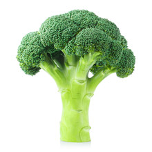 Delicious Fresh Broccoli, Isol...