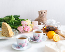 Tea Party With Cat. Homemade Cake, Lemon, Teapot And Tulips On The Background. Copy Space. Mother's Day Concept
