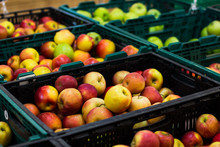 Supermarket Environment Photography With Green And Red Fresh Apple Fruits In Market Counter Ready For Selling
