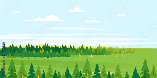 Fotografia Spruce tops forest summer landscape background in simple geometric form, wildlif