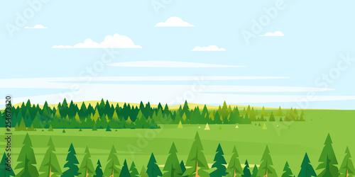 Obraz na płótnie Spruce tops forest summer landscape background in simple geometric form, wildlif