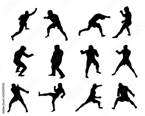 Photo Martial Arts Silhouetten