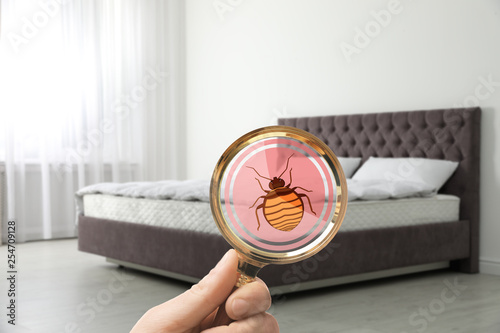 Fotografie, Tablou Woman with magnifying glass detecting bed bugs on mattress, closeup