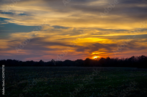 sunset over the field