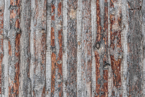 Fotografiet  A beautiful horizontal texture of old brown and gray wooden boards fence from pi