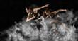 Leinwanddruck Bild - Woman sprinter leaving starting