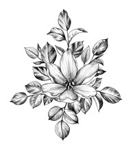 Hand Drawn Flower With Leaves
