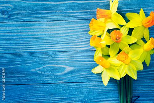 Fényképezés Daffodil flowers on blue wooden background