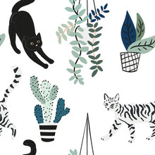 Cute Cats And House Plants On ...