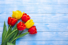 Fresh Colorful Tulips Flowers ...