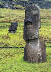 Moais at Ranu Raraku, Wyspa Wielkanocna