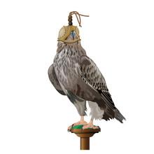 Falcon Wearing Hood