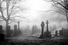 Scarey Grave Yard In The Mist ...