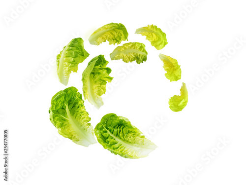 Fototapeta Spiral flying heap of green baby cos lettuce salad leaves obraz