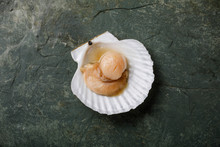 Raw Uncooked Scallop In Cockle...