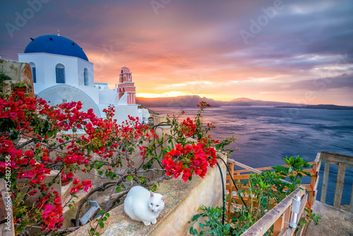 Photo sur Toile Lavende Sunset on the famous Oia city, Greece, Europe