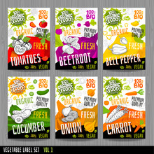 Food Label Set Stickers Collection Vegetable Labels Spices Package Design. Tomatoes, Beetroot, Bell Pepper, Cucumber, Onion, Carrot. Organic, Fresh, Bio, Eco. Hand Drawn Vector Illustration.