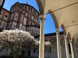 Milano, il chiostro delle Rane in primavera - Basilica di Santa Maria delle Grazie
