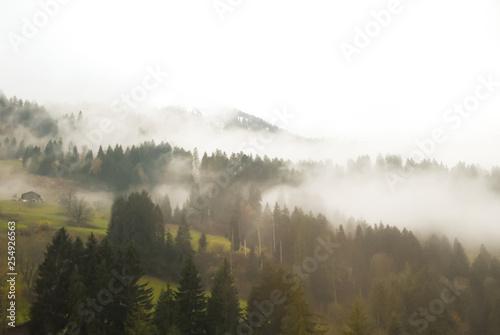 Poster Morning with fog ゴールデン・パス・ラインの車窓 雲が垂れ込める秋の雨のベルナー・オーバーラント地方の山(スイス・ベルン州)