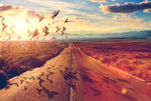 Carretera Y Concepto De Viajes...
