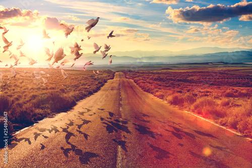 Photo Carretera y concepto de viajes y aventuras