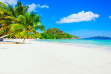 Vacation Summer Holidays Background Wallpaper - Exotic Sunny Tropical Caribbean Paradise Beach With White Sand In Seychelles At Island Thailand Style With Palms  On Good Sunny Weather And Azure Sea