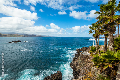 Tourism and travel. Windy day on the ocean. Cacti and palm trees on the seashore. Canary Islands, Atlantic Ocean. Tropics