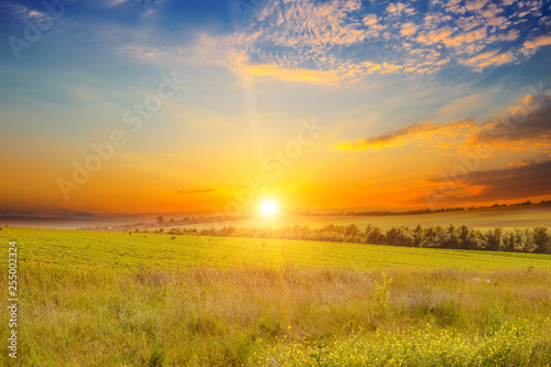 Wide landscape green field and sunset