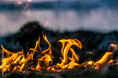 Foto The flames of the fire burning the herb in the evening field, turning into coals and ashes with smoke
